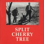 Split Cherry Tree [by Jesse Stuart] (short story) - بریدن درخت گیلاس [اثر جسی استوارت] (داستان کوتاه)