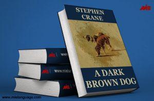 18391564e dark brown dog